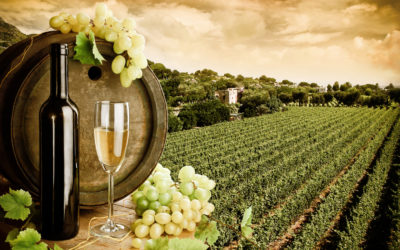 This … is Franciacorta